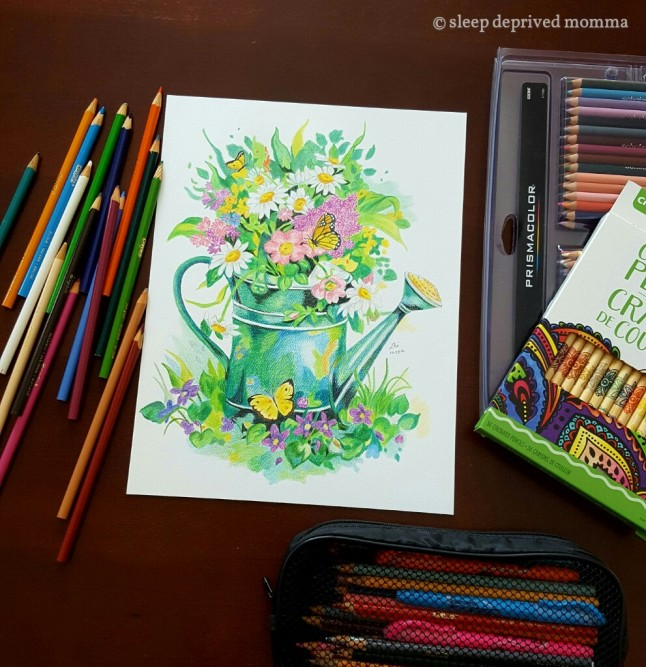 coloured-pencil-sketch_wm2.jpg