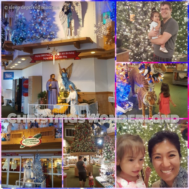Christmas wonderland photos.