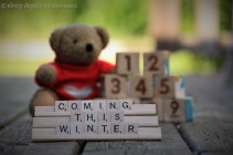 bear and blocks baby announcement