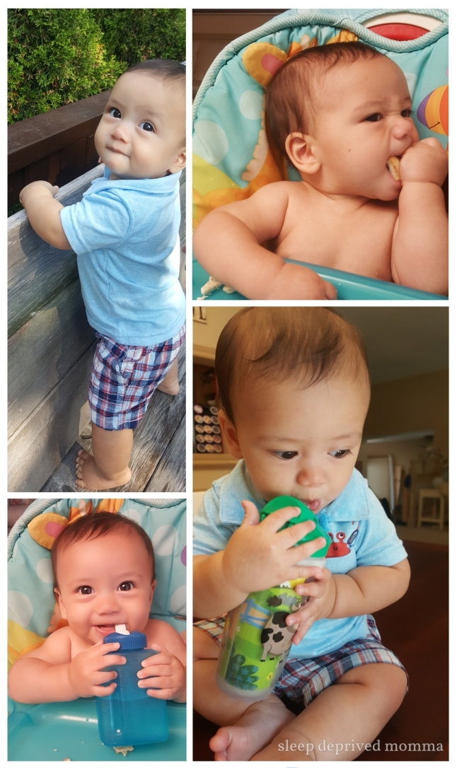 cute baby boy collage.jpg